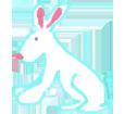 Conejo  adulto - pelaje 1340000009