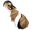 Conejillo de Indias peruano - pelaje 1340000002